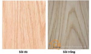 Cách phân biệt gỗ sồi nga và tần bì cho bác nào chưa biết
